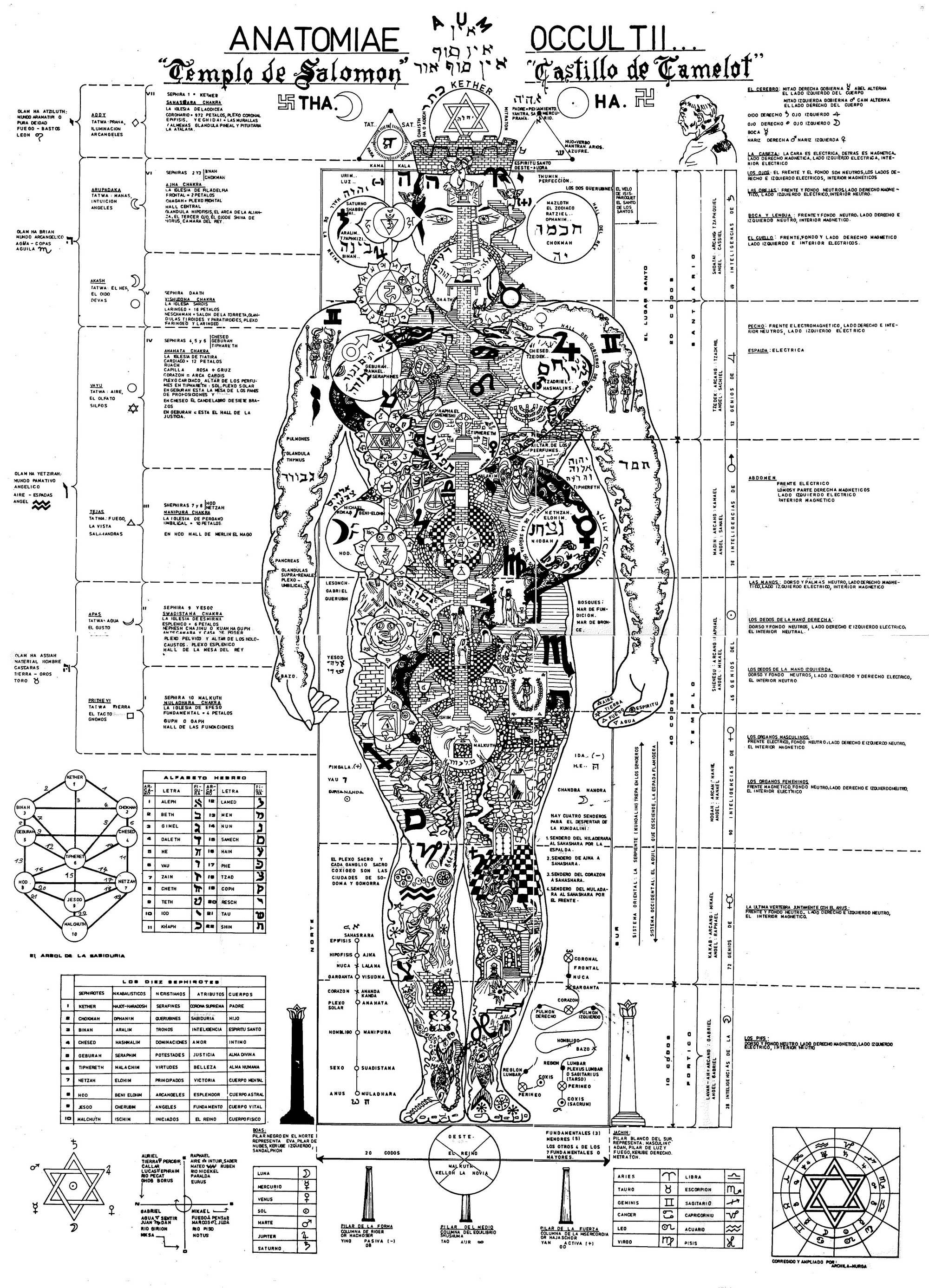 El hombre, el microcosmos del universo (imágenes de la anatomía oculta)