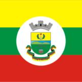 bandeira de pinheiro machado